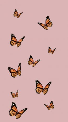 Butterfly Aesthetic Wallpaper