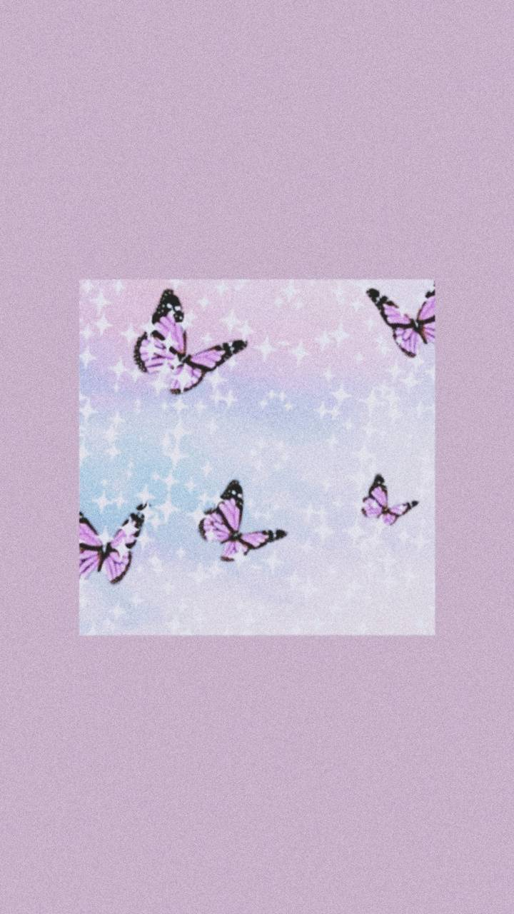 Butterfly Aesthetic Wallpaper - NawPic