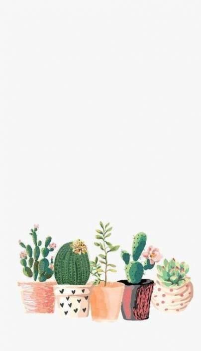 Cactus Background Hintergrundbild