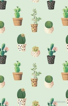 Cactus Background Wallpaper