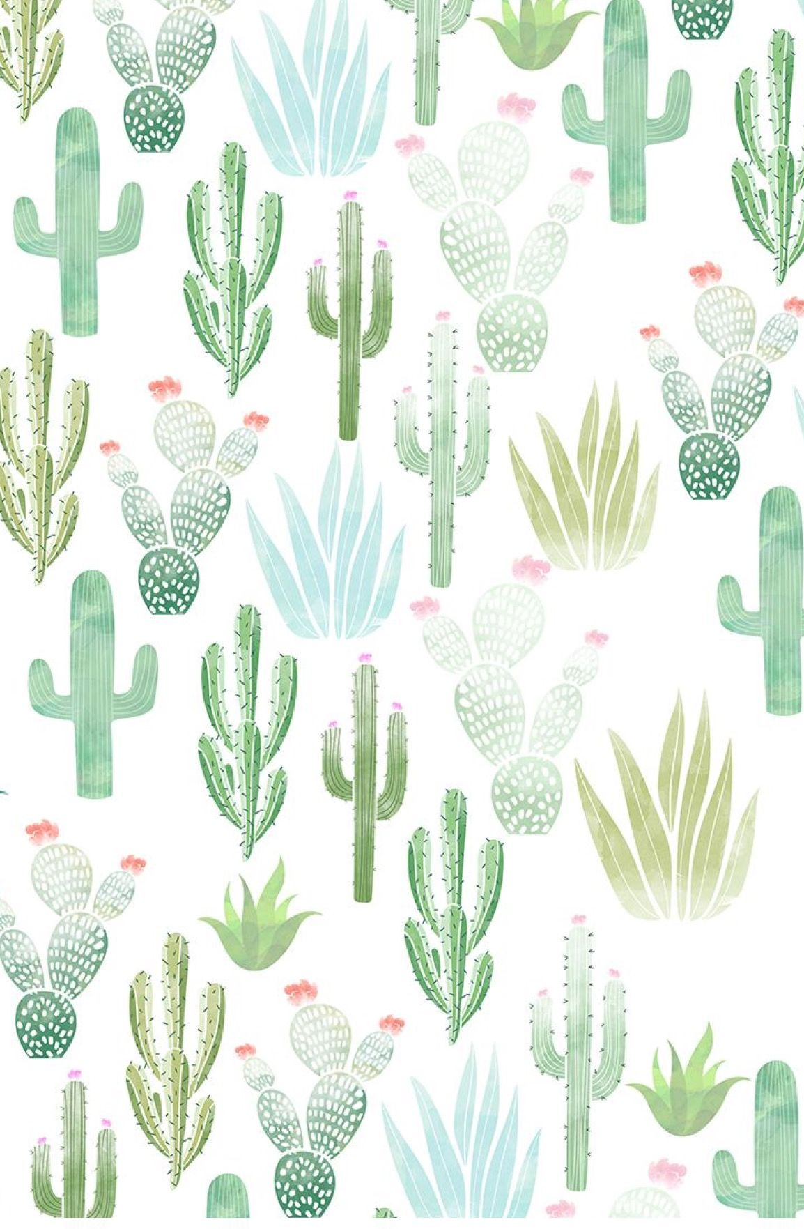 Cactus Background Wallpaper Nawpic