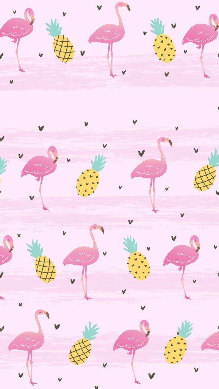 Flamingo Hintergrundbild
