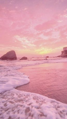 Summer Pink Hintergrundbild